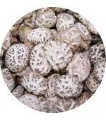 日本上等花菇半斤